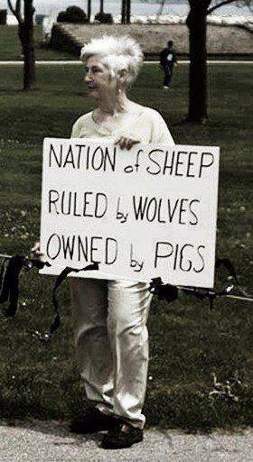 sheep_wolves_pigs.jpg