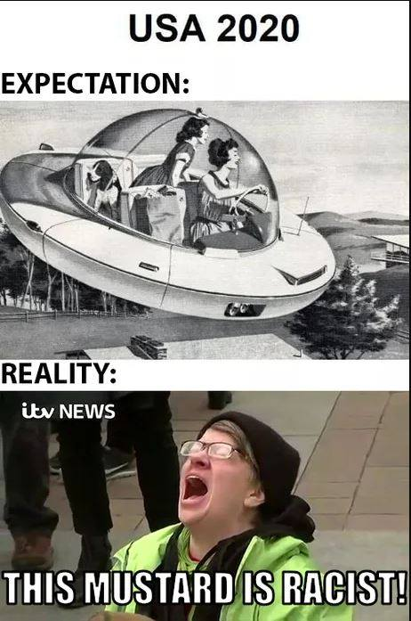 usa_2020_expectations_vs_reality.jpg