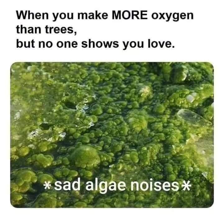 when_you_make_more_oxygen_than_trees.jpg