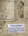 art-sign-footprints
