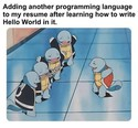 adding program languages