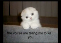 the voices are telling me to kill you