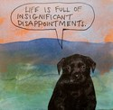 insignificant disappointments