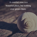 nothing grows in comfort zone